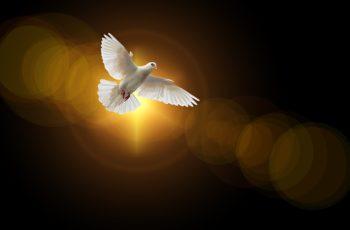 Quem é o Espírito Santo pra você?
