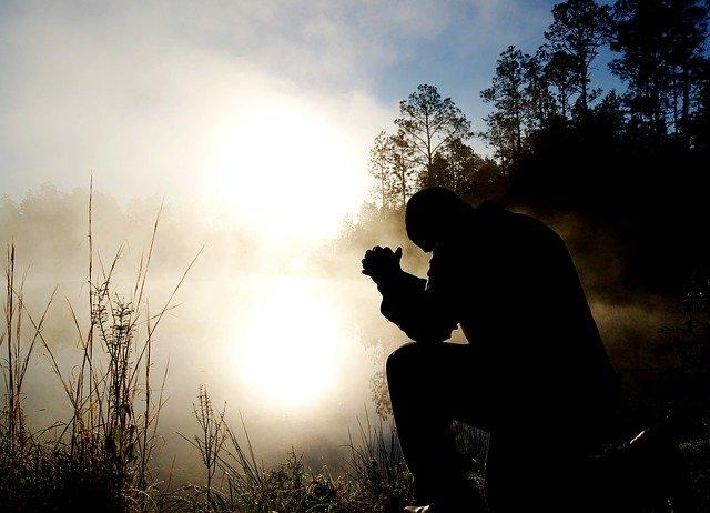 Pare de lutar contra o inimigo errado - Conselheiro Cristão