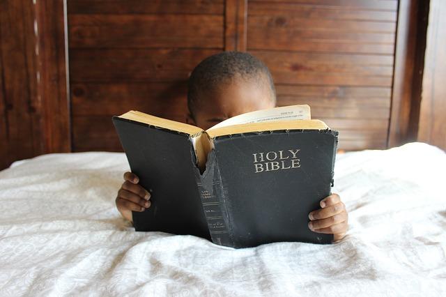 Defraudação do Conhecimento | Examine as Escrituras