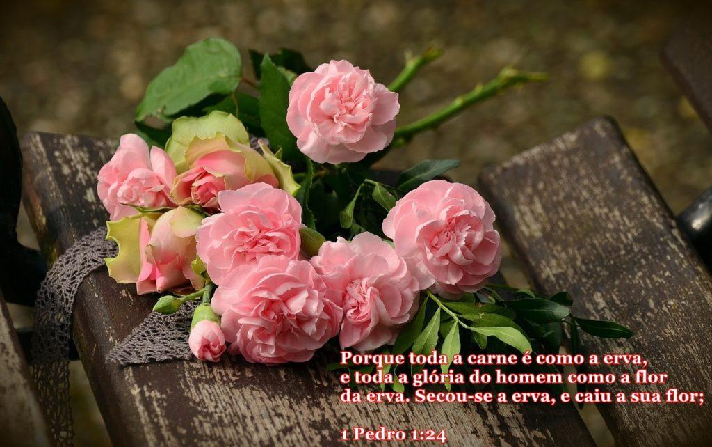 Rosas Buque de Flores 1024x642 - Toda Carne é Como a Erva