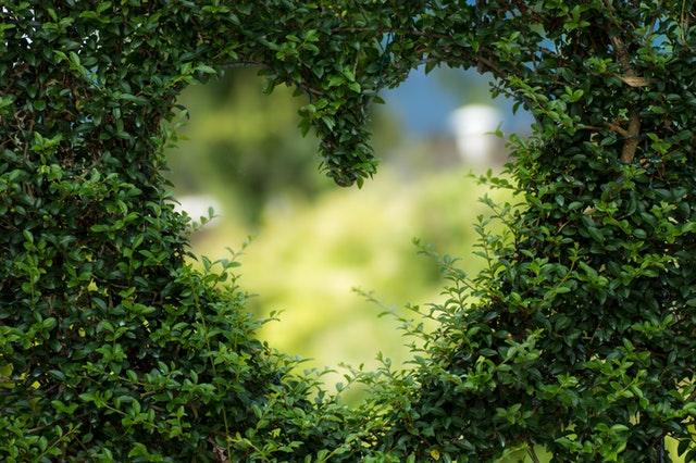Amor de Deus e Mensagens de Amor - Conselheiro Cristão