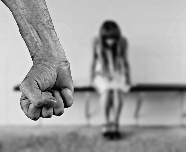 Diga Não a Violência Contra a Mulher - Diga Não a Violência Contra a Mulher