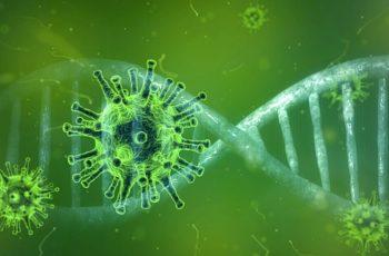 Coronavírus em Wuhan na China se Espalha o Que Fazer e Como se Prevenir