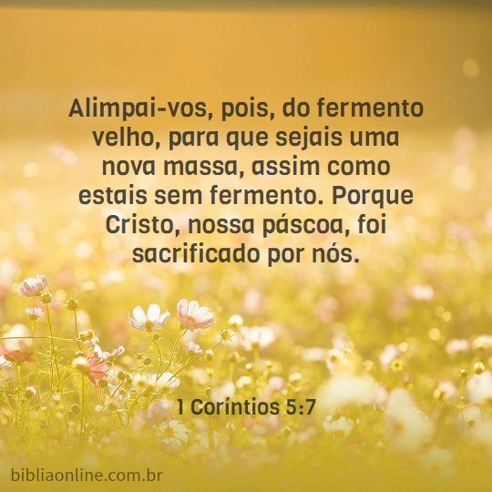 Alimpai-vos, pois, do fermento velho, para que sejais uma nova massa, assim como estais sem fermento. Porque Cristo, nossa páscoa, foi sacrificado por nós. 1 Coríntios 5:7