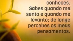 Palavra do dia - Salmos 139