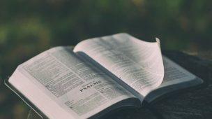 Mensagem da Bíblia Para Hoje - Bíblia Sagrada