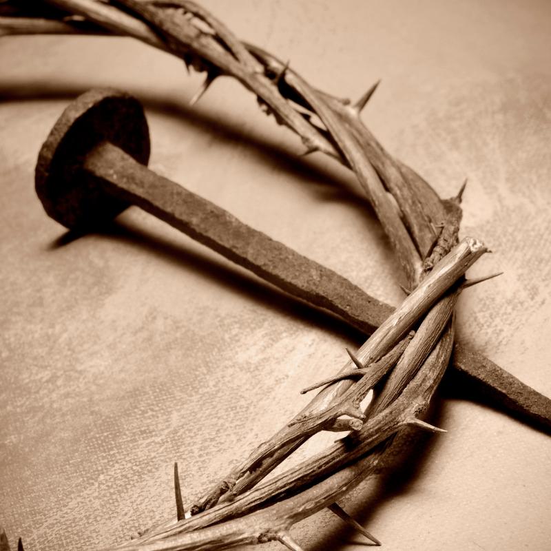 Por que Jesus Veio ao Mundo - Por que Jesus Veio ao Mundo